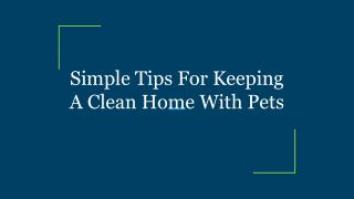 Simple Tips For Keeping A Clean Home With Pets