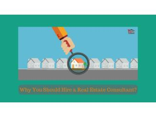 Why You Should Hire a Real Estate Consultant?