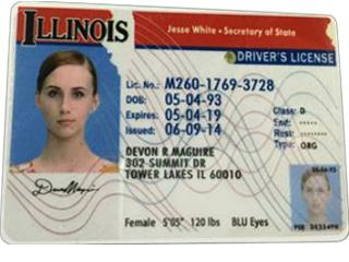 Apply Voter ID Card Online |drivers license Online  86-17195049357
