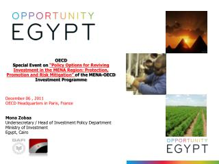OECD  Special Event on  Policy Options for Reviving Investment in the MENA Region: Protection, Promotion and Risk Mitiga