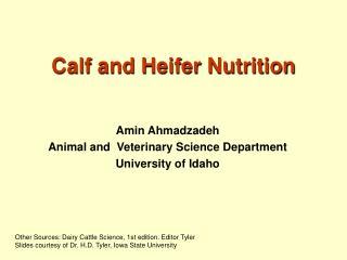 Calf and Heifer Nutrition