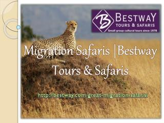 Migration Safaris |Bestway Tours & Safaris