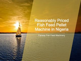 Nigeria Fish Feed Pellet Machine