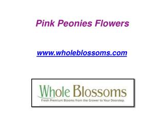Pink Peonies Flowers - www.wholeblossoms.com