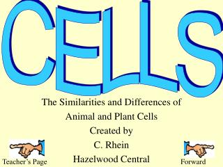 The Similarities and Differences of  Animal and Plant Cells Created by  C. Rhein Hazelwood Central