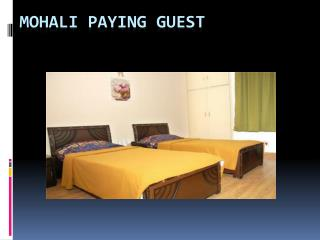 Paying guest services in tricity mohali