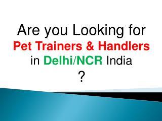 Pet Trainers & Handlers in Delhi/NCR India