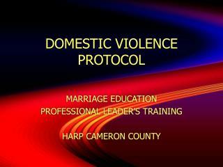 DOMESTIC VIOLENCE PROTOCOL