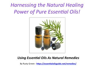 Harnessing The Therapeutic Power Of Essential Oils