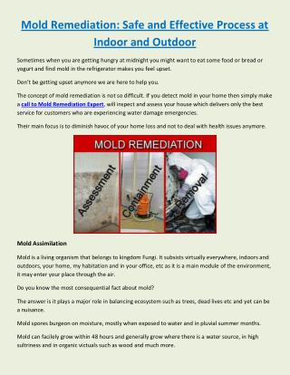 Mold Remediation: Safe and Effective Process at Indoor and Outdoor