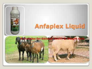 dairy goat feed supplements