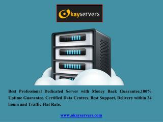 Professional Dedicated Server