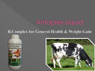 cattle feed supplements India