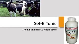 Calf growth Supplement