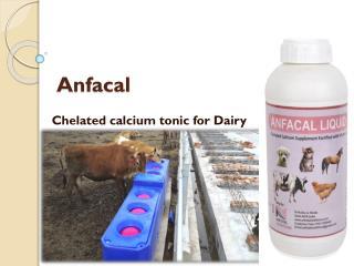 cattle calcium supplements