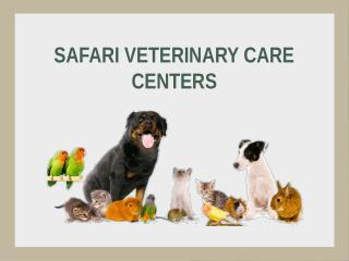 Animal Wellness Center Texas