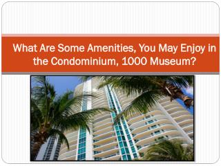 What Are Some Amenities, You May Enjoy in the Condominium, 1000 Museum?
