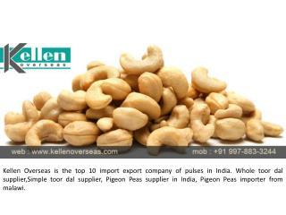 Cashew Nuts Suppliers, Manufacturers & Exporters in India | Kellen Overseas