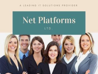 Computer Services London - Net Platforms