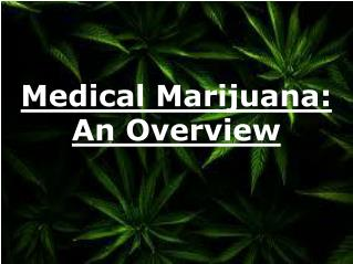 Medical Marijuana - An Overview