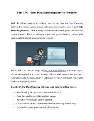 B2B LEO – Best Data Scrubbing Service Providers