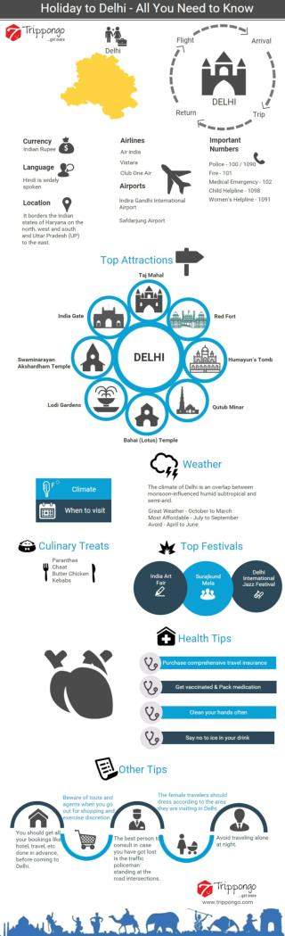 Delhi Travelling Infographic - Trippongo