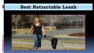 Best Retractable Leash