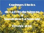 Quelques Photos   de La F te du Mimosa     Mandelieu-La Napoule  F vrier 2006