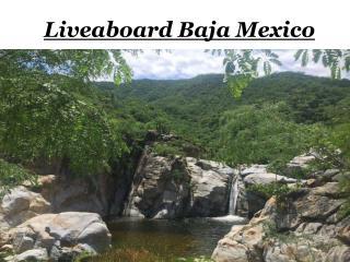 Liveaboard Baja Mexico