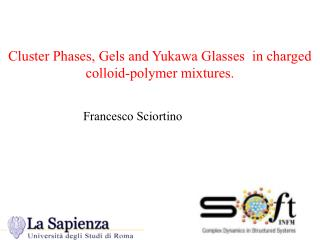 Cluster Phases, Gels and Yukawa Glasses  in charged colloid-polymer mixtures.