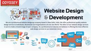 Search Engine Optimization Company Delhi | Website Development Company India