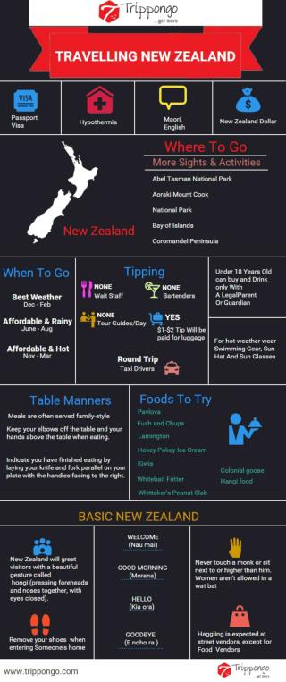 New Zealand Travelling Infographic - Trippongo