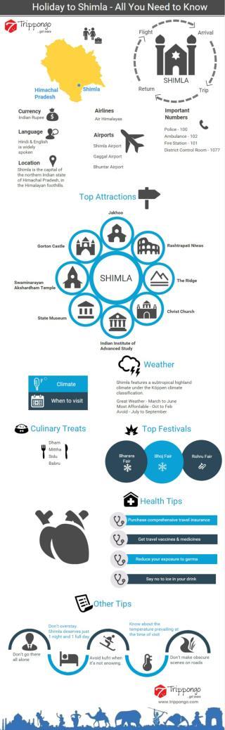 Shimla Travelling Infographic - Trippongo
