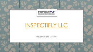 Inspectifly LLC Presentation