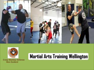 3 Prominent Aspects That Makes Crazy Monkey Defense the best place to learn Martial arts Wellington