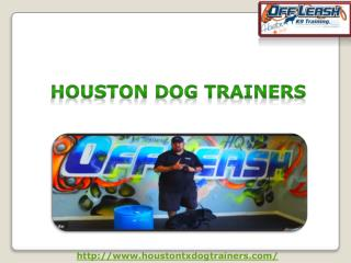 Best Dog Trainers in Houston USA