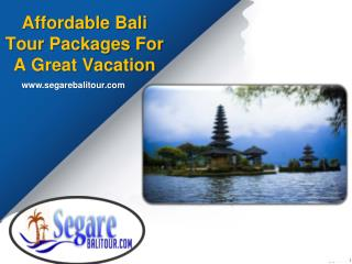 Affordable Bali Tour Packages For A Great Vacation