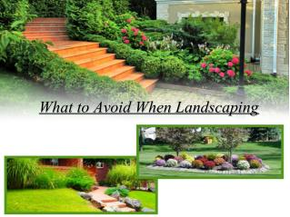 What to Avoid When Landscaping