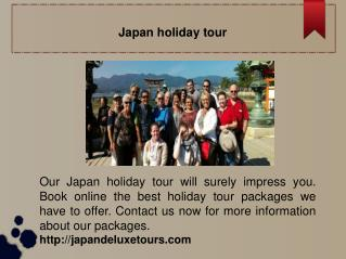 Japan Holiday Tour