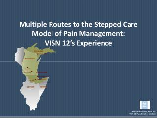 Multiple Routes to the Stepped Care Model of Pain Management:   VISN 12 s Experience