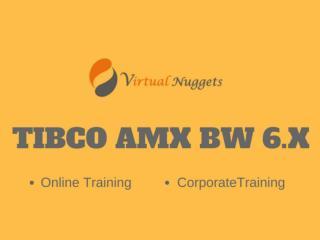 TIBCO AMX BW 6.X Online Training | Tutorials | Demo