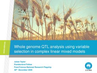 Whole genome QTL analysis using variable selection in complex linear mixed models
