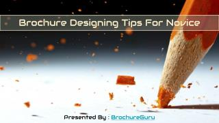 Brochure Designing Tips For Novice