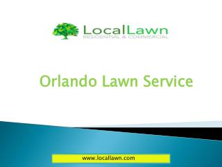 St. Cloud lawn service