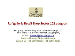 Rof Galleria | Rof galleria gurgaon