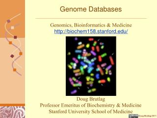 Genome Databases