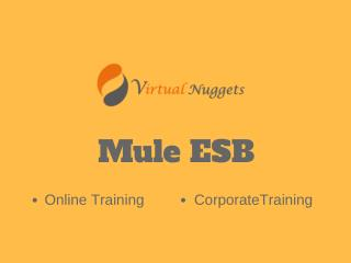 Mule ESB Online Training | Self Learning Videos