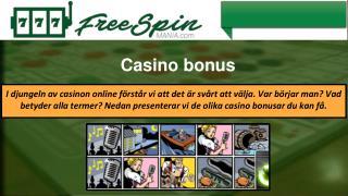 Bingo Spel Recensioner
