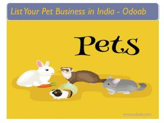 List Your Pet Business in India - Free List | Odoab