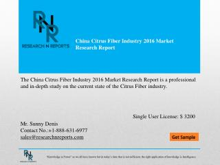China Citrus Fiber Industry Market Analysis